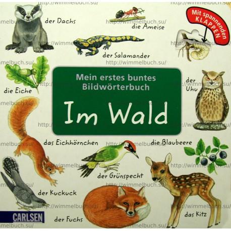 Mein erstes buntes Bildwörterbuch: Im Wald